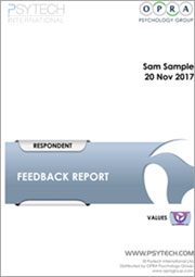 VMI Feedback Report Sample thumb