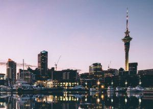 Auckland City Council, Case Study